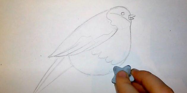 كيفية رسم الرصاص: أكمل الذيل والجناح
