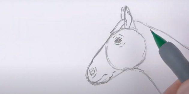 Hoe een paard te tekenen: teken je mond, kin en oren