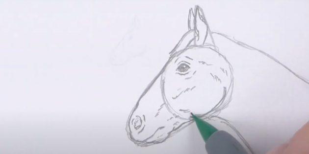 Hoe een paard te tekenen: teken de kaak
