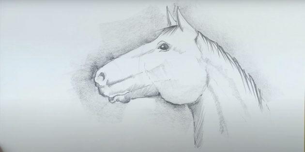 Realistische paarden gezicht