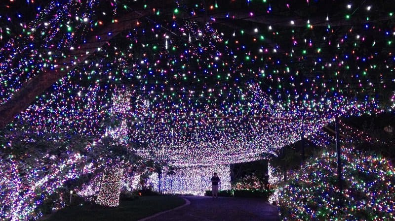 How Fix Christmas Tree Lights Half Out
