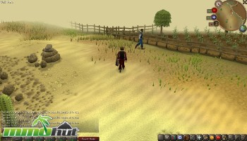 Top 10 Best Browser Games   MMOHuts RuneScape Desert Screenshot