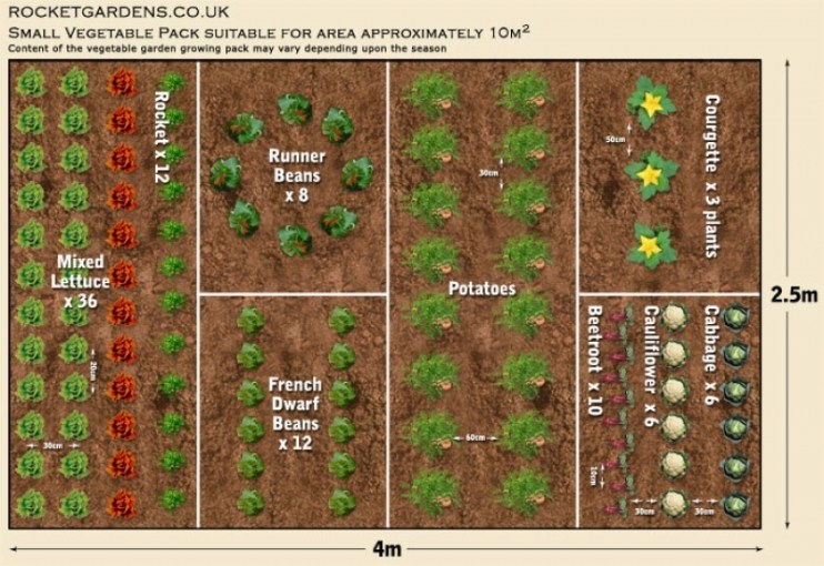 19 Vegetable Garden Plans   Layout Ideas That Will Inspire You The Great Small Garden Layout