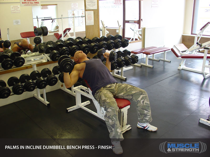Palms In Incline Dumbbell Bench Press Video Exercise
