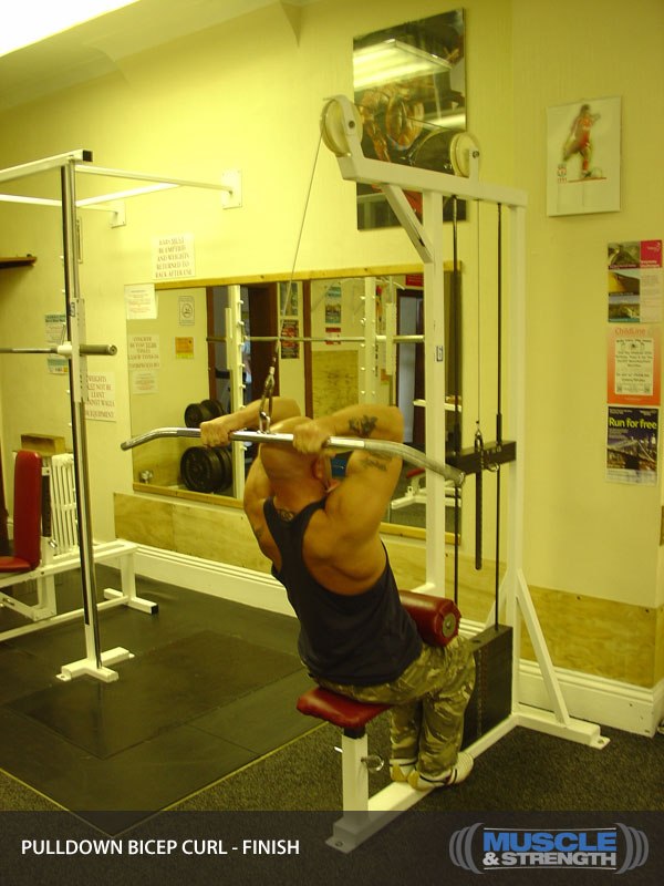 Pulldown Bicep Curl Video Exercise Guide Amp Tips