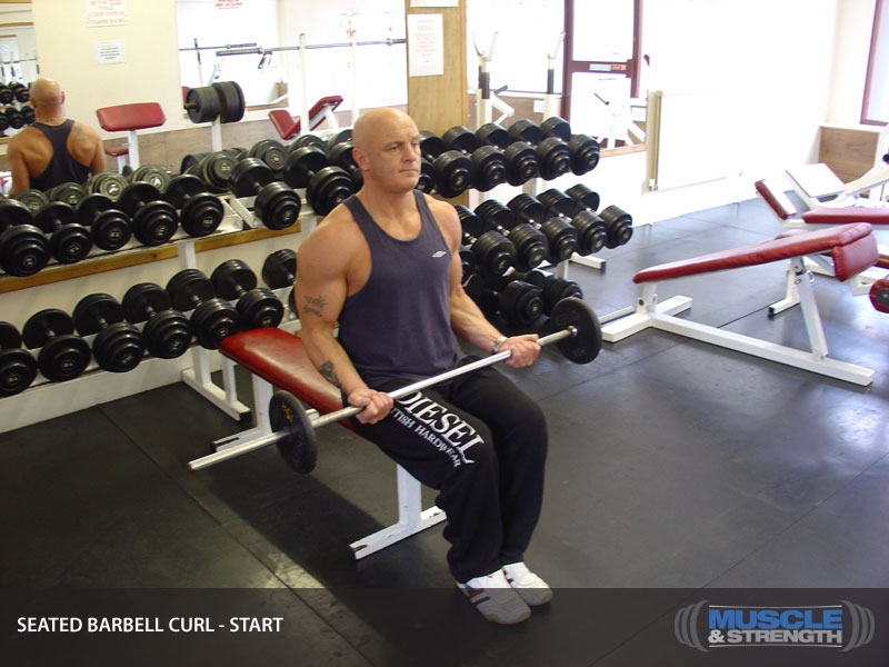 Seated Barbell Curl Video Exercise Guide Amp Tips