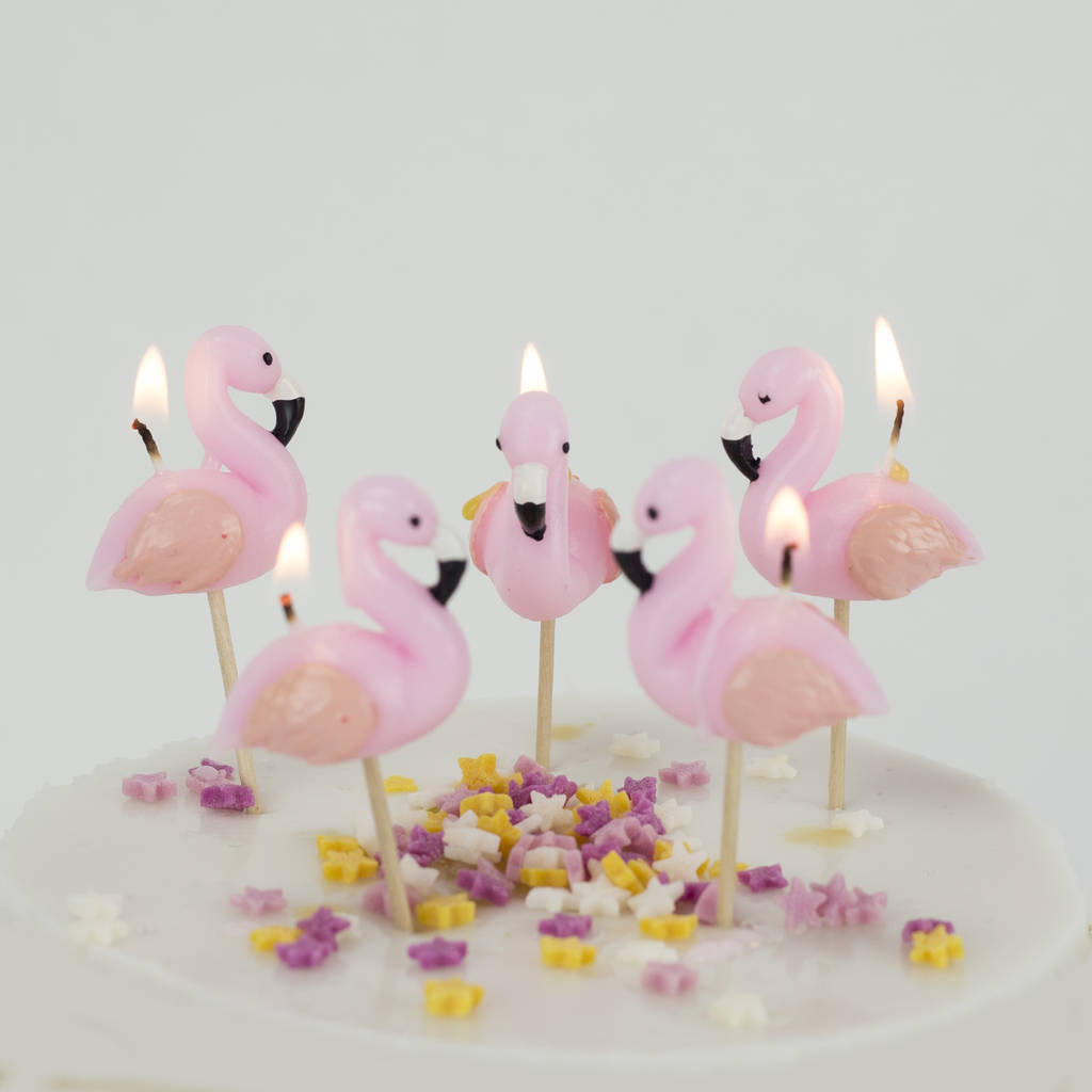 Flamingo Cake Candles Birthday Tropical Bird By We Love To