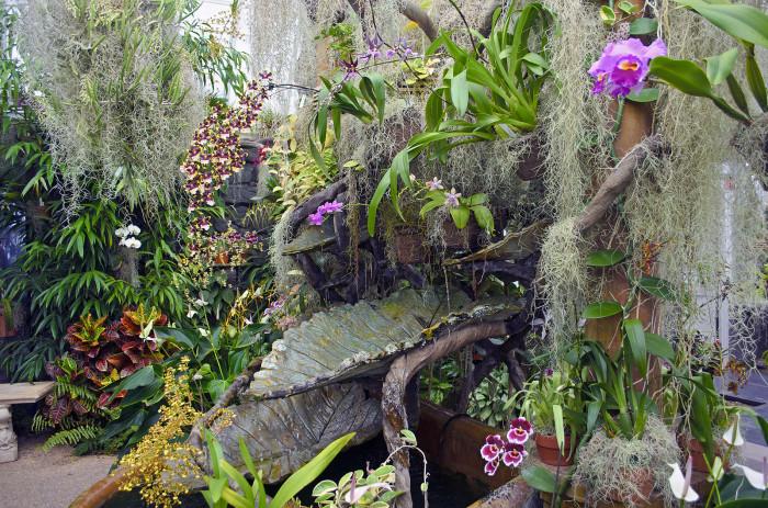 Flower Garden Ponds