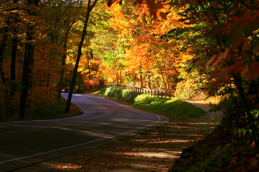 12 Scenic Country Roads In Ohio To Drive In The Fall