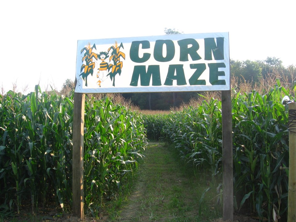 Best Corn Mazes Michigan