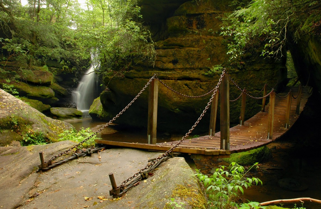 Dismals Canyon The One Place In Alabama That Looks Like Middle Earth