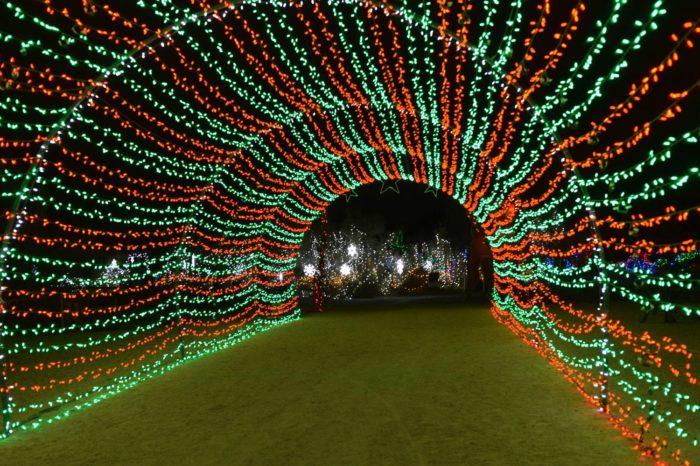 La Zoo Lights Coupon