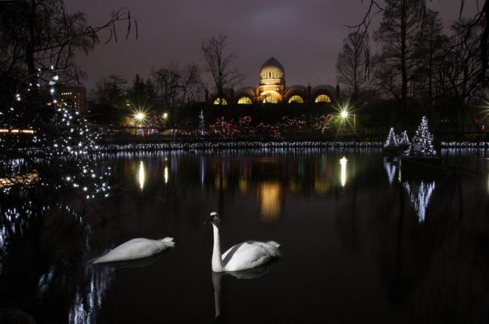 Festival Lights Cincinnati Zoo 2017