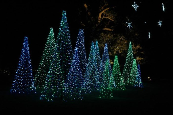 Montgomery Al Zoo Christmas Lights
