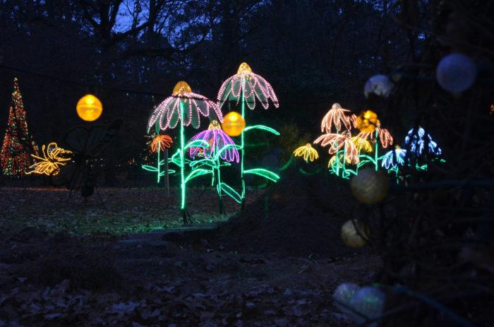 christmas lights in garvan woodland gardens hot springs ar - Garvan Gardens Christmas Lights