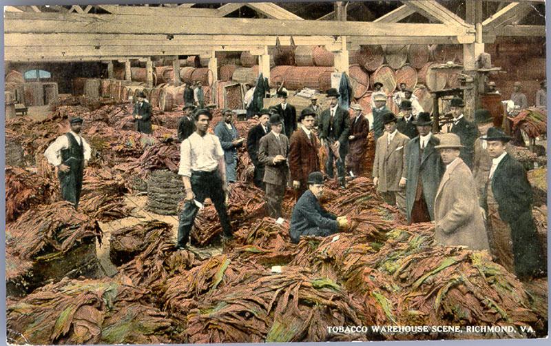 Farm Fresh Market Chesapeake Va