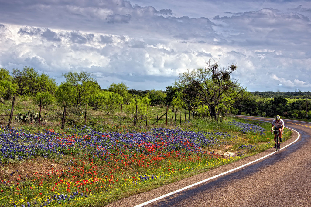 Willow City Loop Is The Best Scenic Drive For Bluebonnets