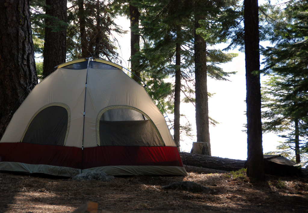 11 Campgrounds In Northern California Where No Reservation
