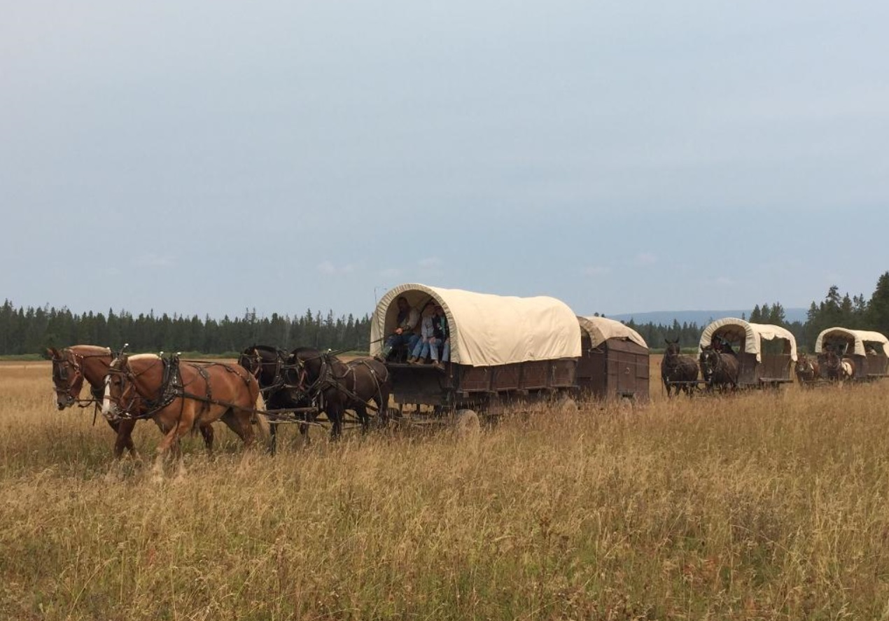 Have An Unforgettable Adventure On This Epic Wyoming Wagon