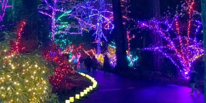 Oregon Zoo Christmas Lights 2017