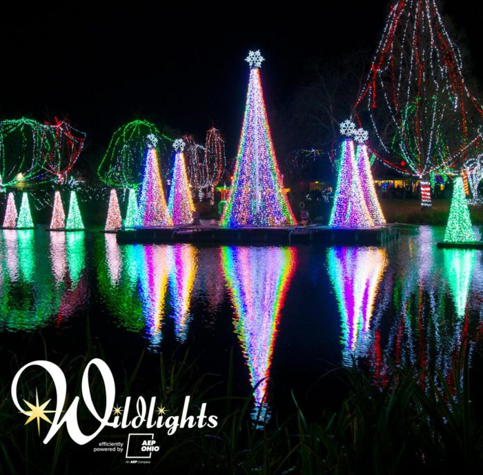 Zoo Lights Columbus Ohio