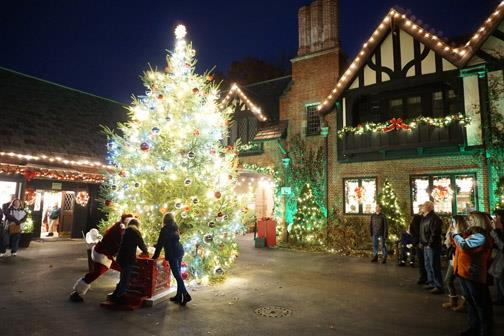 Music Christmas Lights