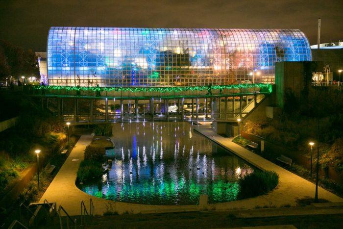Botanical Garden Christmas Lights