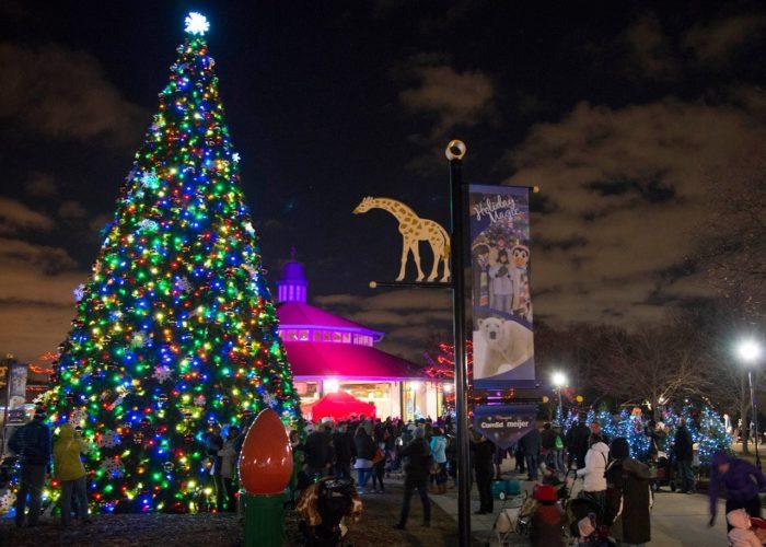 Brookfield Zoo Lights Hours 2017