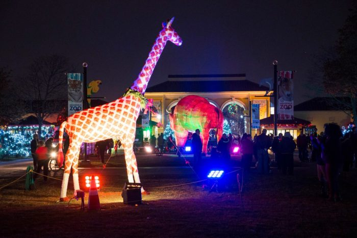 ... Lights Show Vlogmas Day YouTube Detroit Zoo Wild Lights Show Vlogmas  Day Brookfield Zoo In Chicago Has Over Million Holiday Lights Holiday Magic  Is The ...