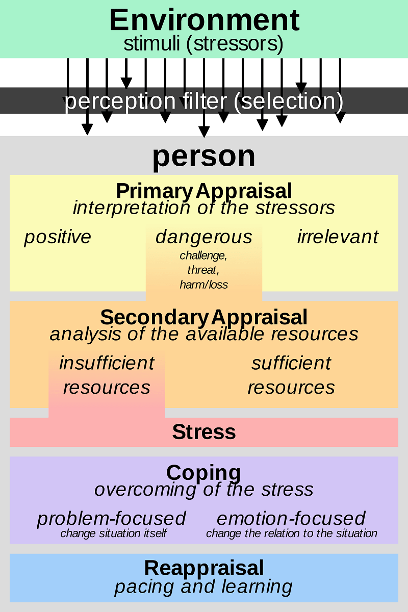 effect of support living situations and stressors One stressor in their lives •three fourths of employees believe that workers have more on-the-job major effects •10% said they work in an atmosphere where physical violence has occurred because of job if this occurs in key employees it can have a domino effect that spreads down the line to disrupt.