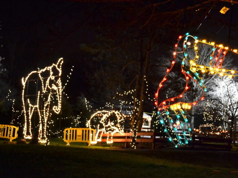 Turtle Back Zoo Holiday Lights