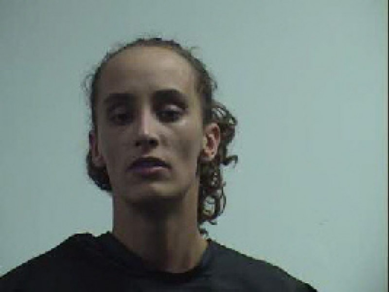 Arrest Greenville County Sc