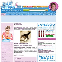 The Porpoise Page