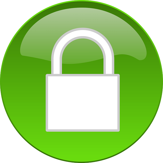 Web Security Options