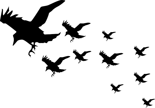 Butterfly Flying Clipart