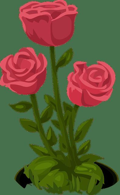Graphic Flower Long Stem