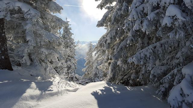 Ski Snow Winter 183 Free Photo On Pixabay