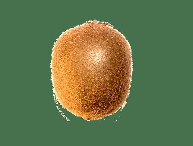 Kiwi Fruit 183 Free Photo On Pixabay