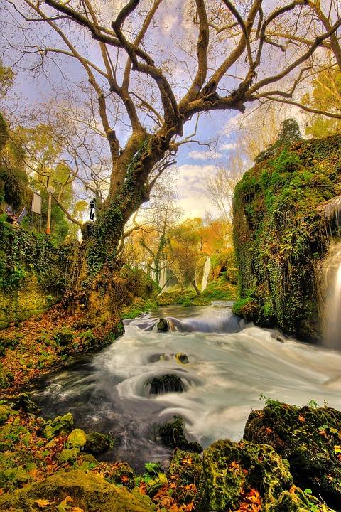 Tree Waterfall Landscape 183 Free Photo On Pixabay