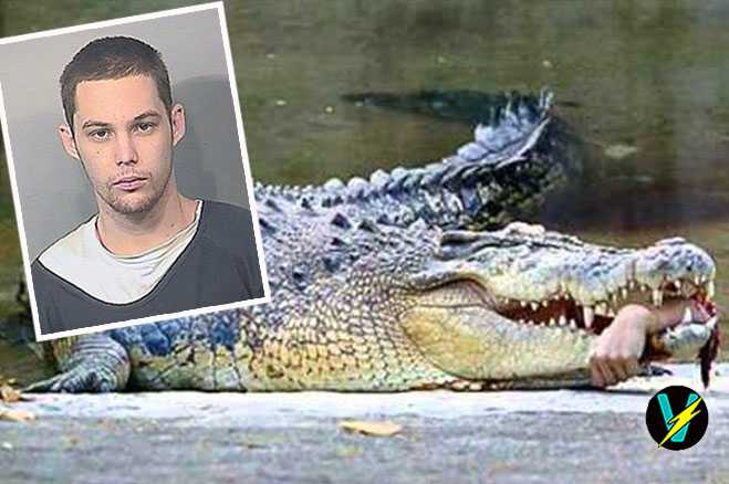 Florida Man Eaten By Alligator While Hiding From Police ...