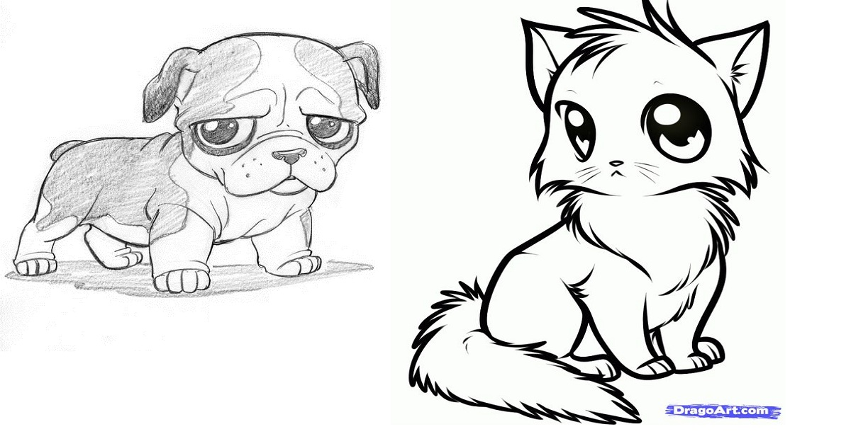 How to Draw Cute Animals – Step by Step Guide - Ritely