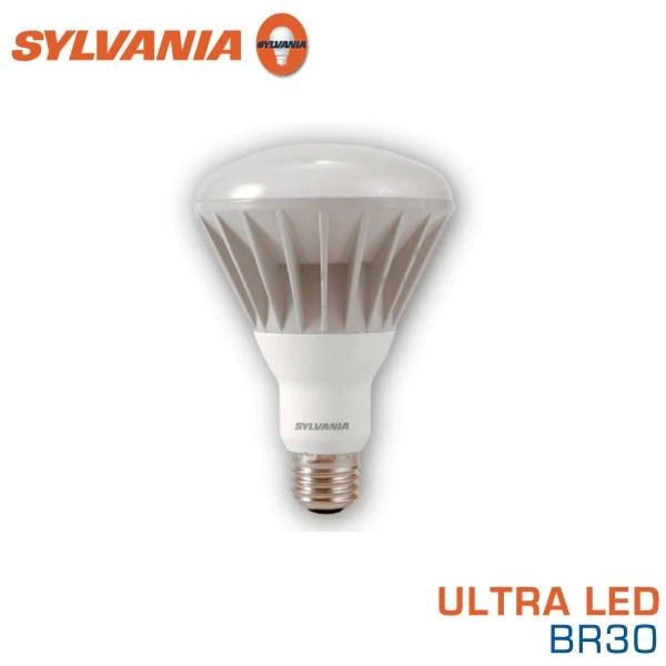 Br30 Flood Light Bulbs