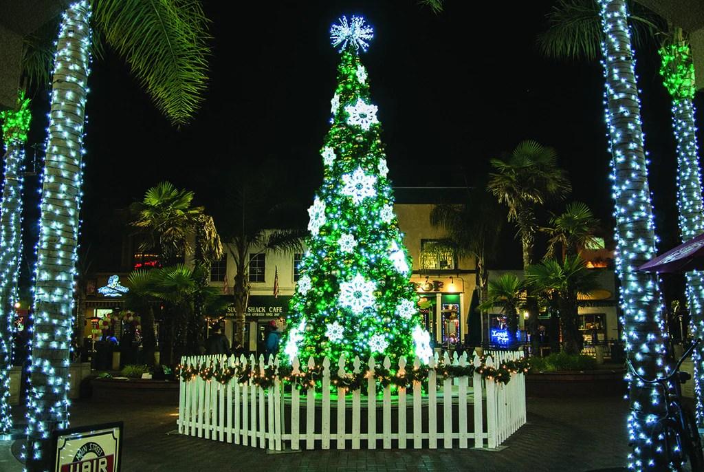 C7 Incandescent Christmas Light Bulbs