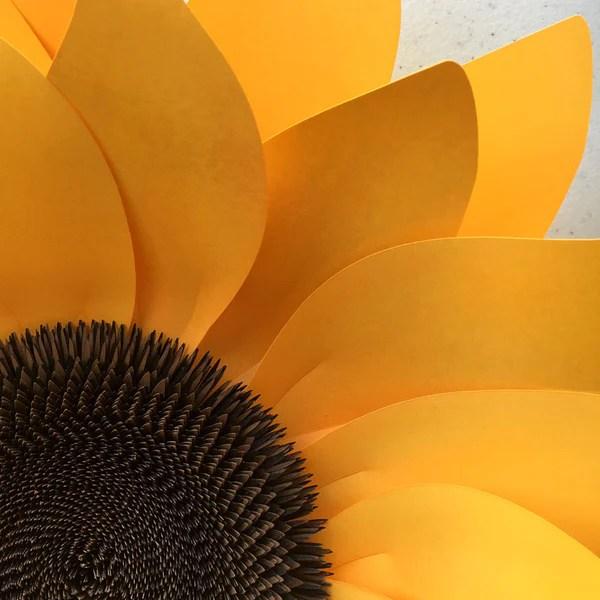 Sunflower Diy Templates For Silhouette Or Cricut Explore