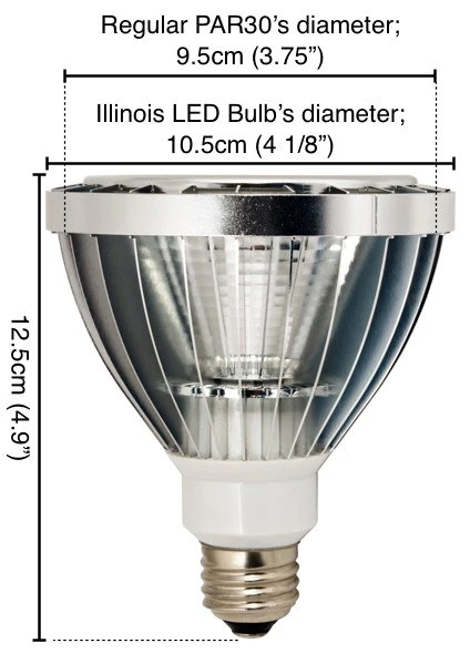 Recessed Light Bulbs