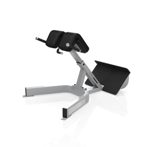 Precor Icarian Series 312 Back Extension Fitness West