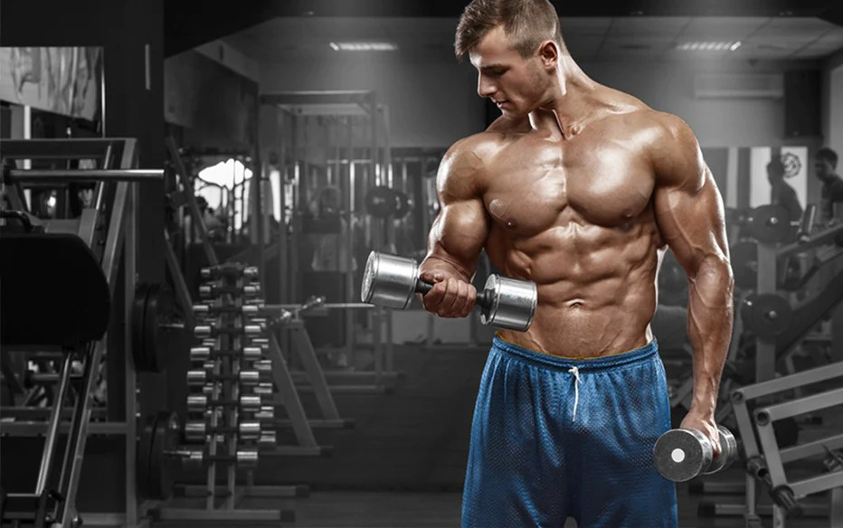 5 Moves To Build Massive Bicep Peaks Asd Performance