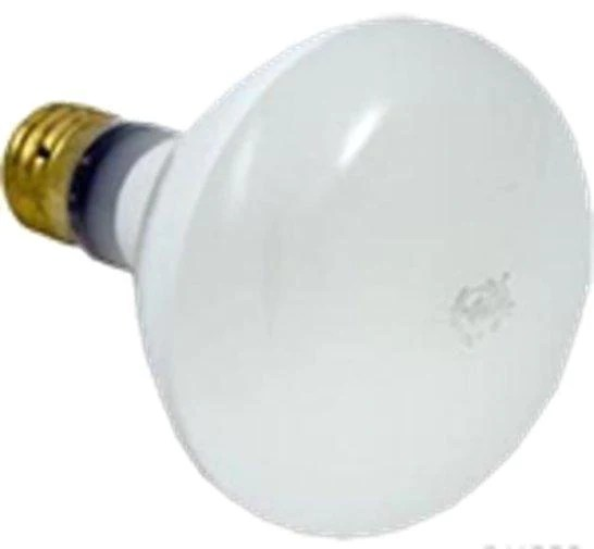 Replacement Pool Light Bulb 500w 120v