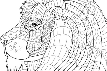 We Hand Picked All Coloring Sheet Animal World Birds Photos To Ensure That They Are High Quality And Free Discover Now Our Large Variety Of Topics