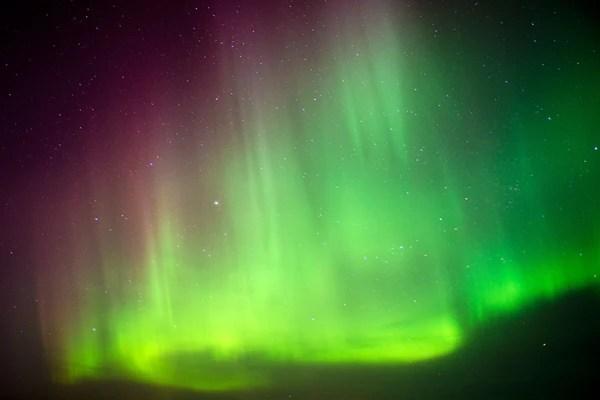 Bc Northern Lights Price List